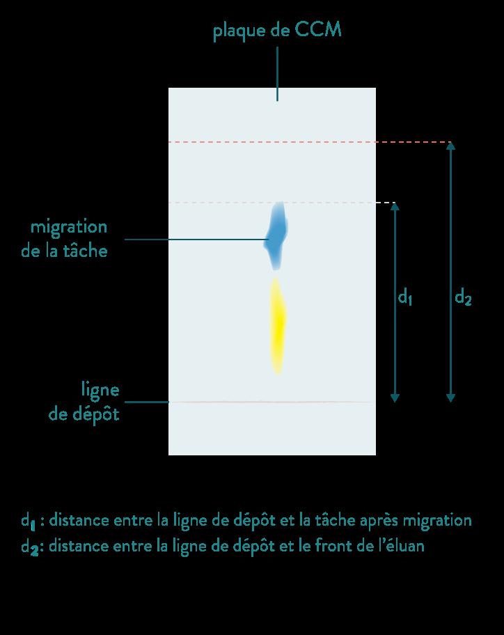 chromatographie sur couche mince