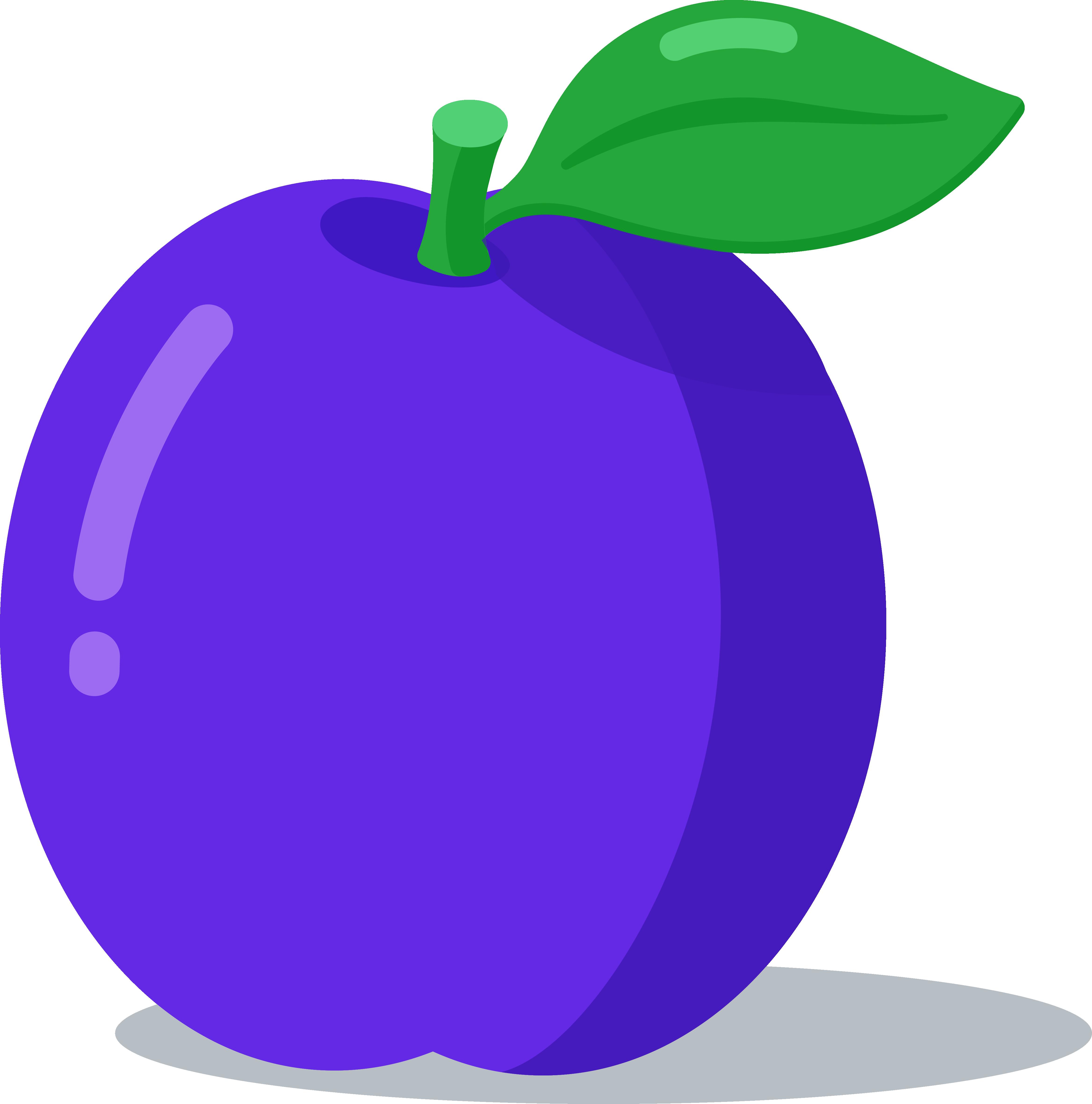 plum fruits anglais