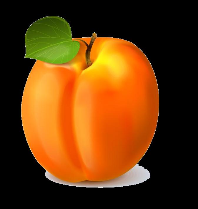 apricot anglais fruits