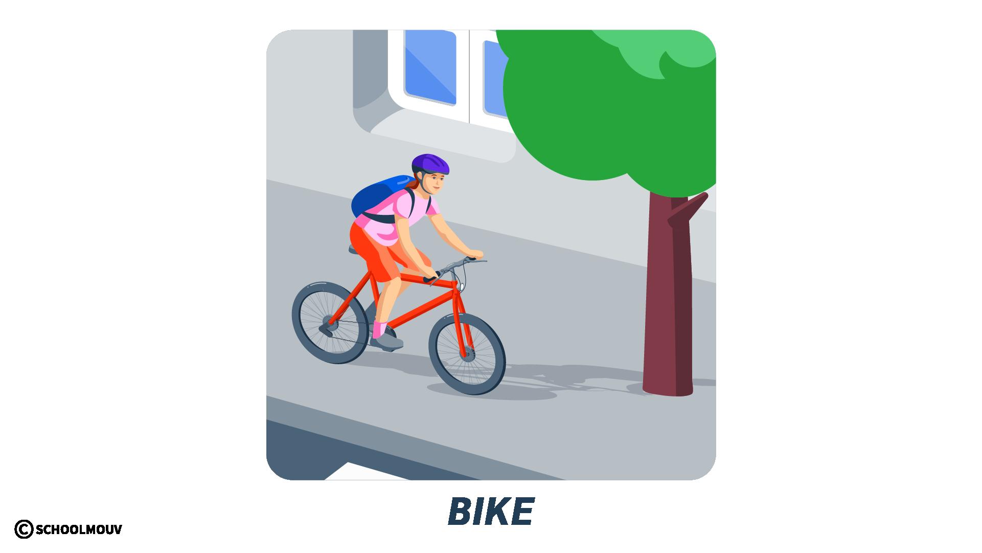 vélo anglais bike transport