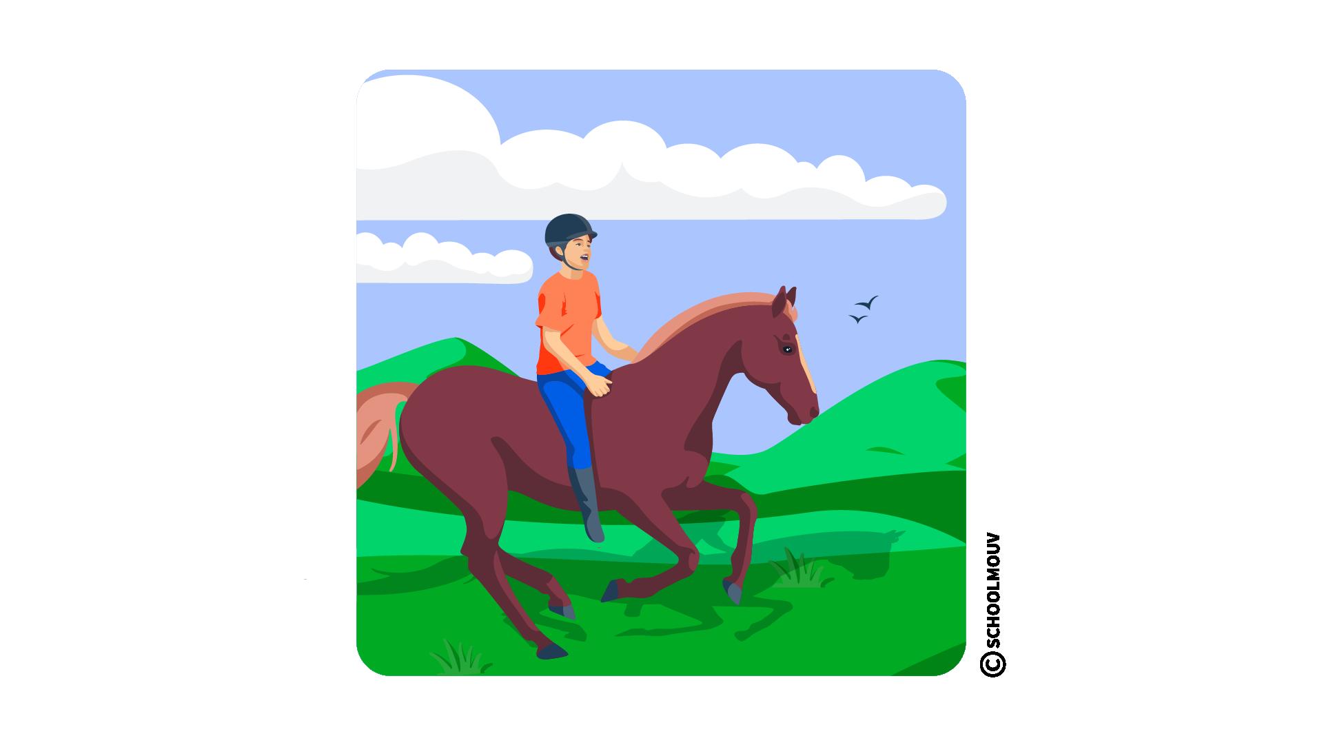 équitation riding anglais activité