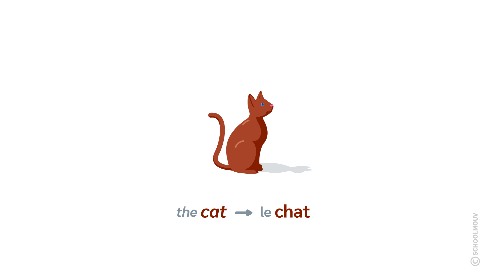 cat chat anglais localisation