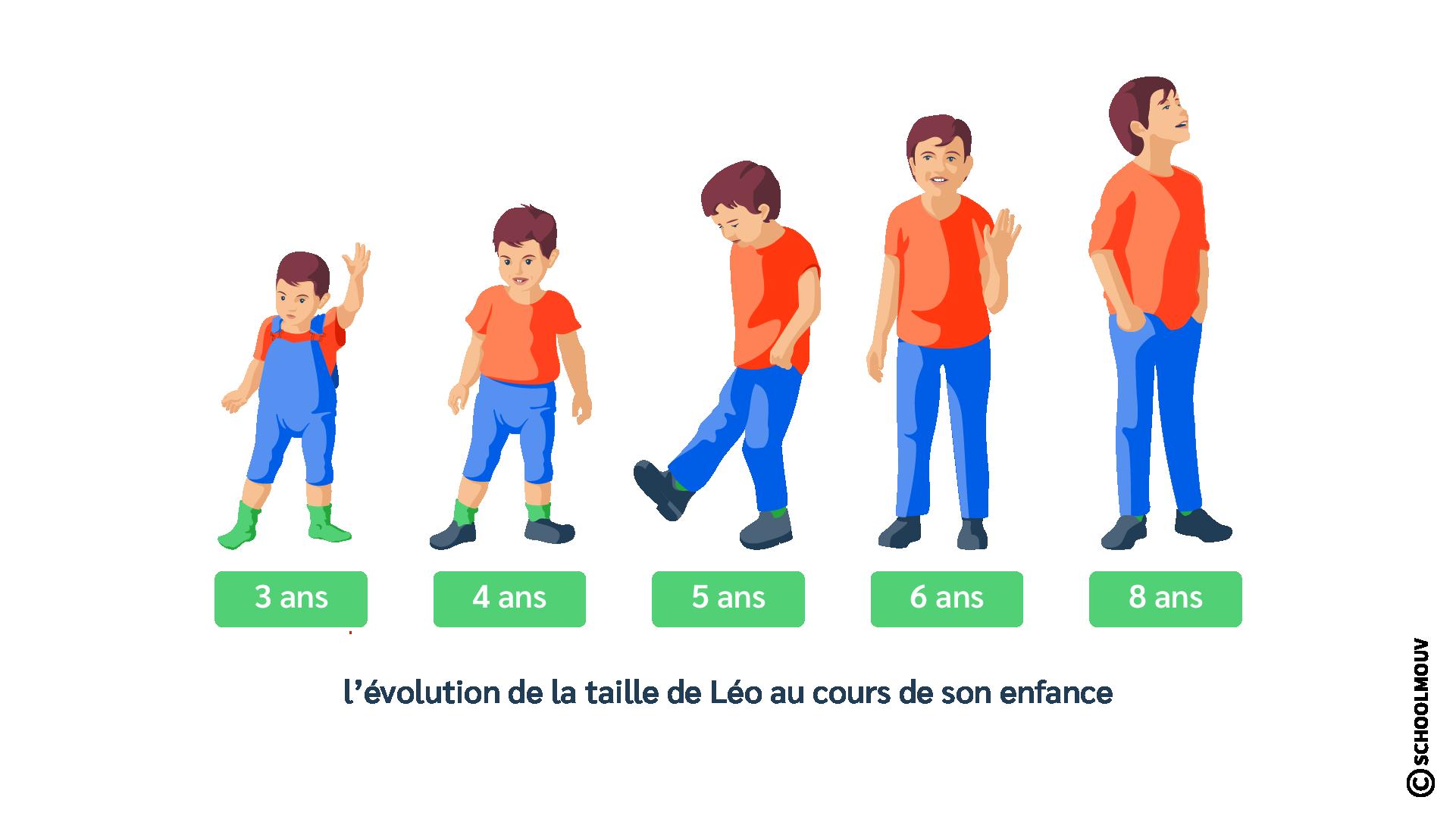 Croissance - Corps - Enfance - Garçon - Taille - Âge - SchoolMouv - Sciences - CE2