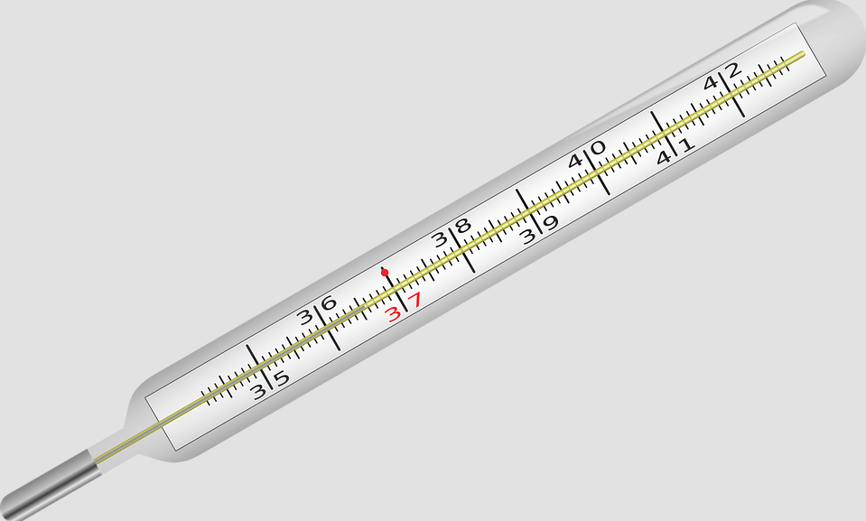 Thermomètre - Température - Corps - Santé - Médical - SchoolMouv - Sciences - CE1