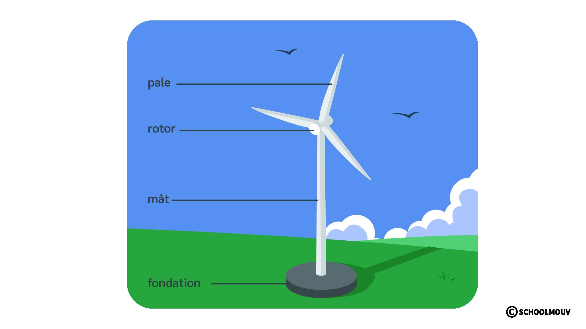 Éolienne - Pale - Rotor - Mât - Fondation - Énergie - Vent - SchoolMouv - Sciences - CE1
