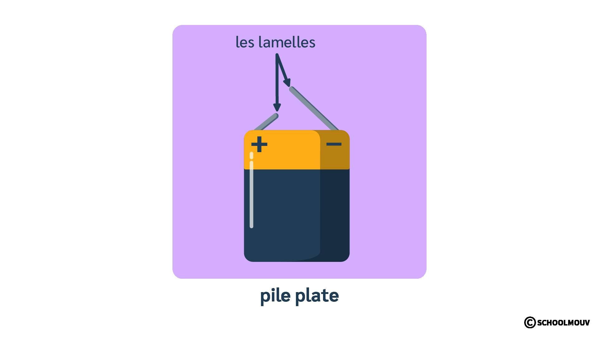 Pile plate - Générateur - Électricité - SchoolMouv - Sciences - CE1