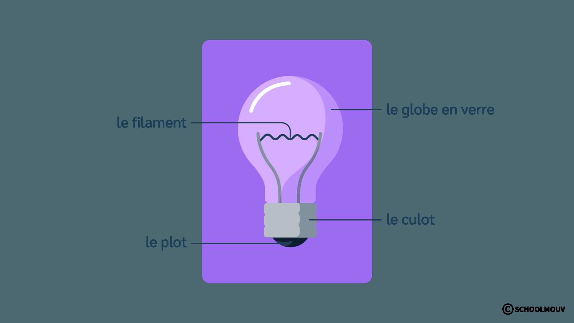 Ampoule - Schéma - Plot - Culot - Électricité - SchoolMouv - Sciences - CE1