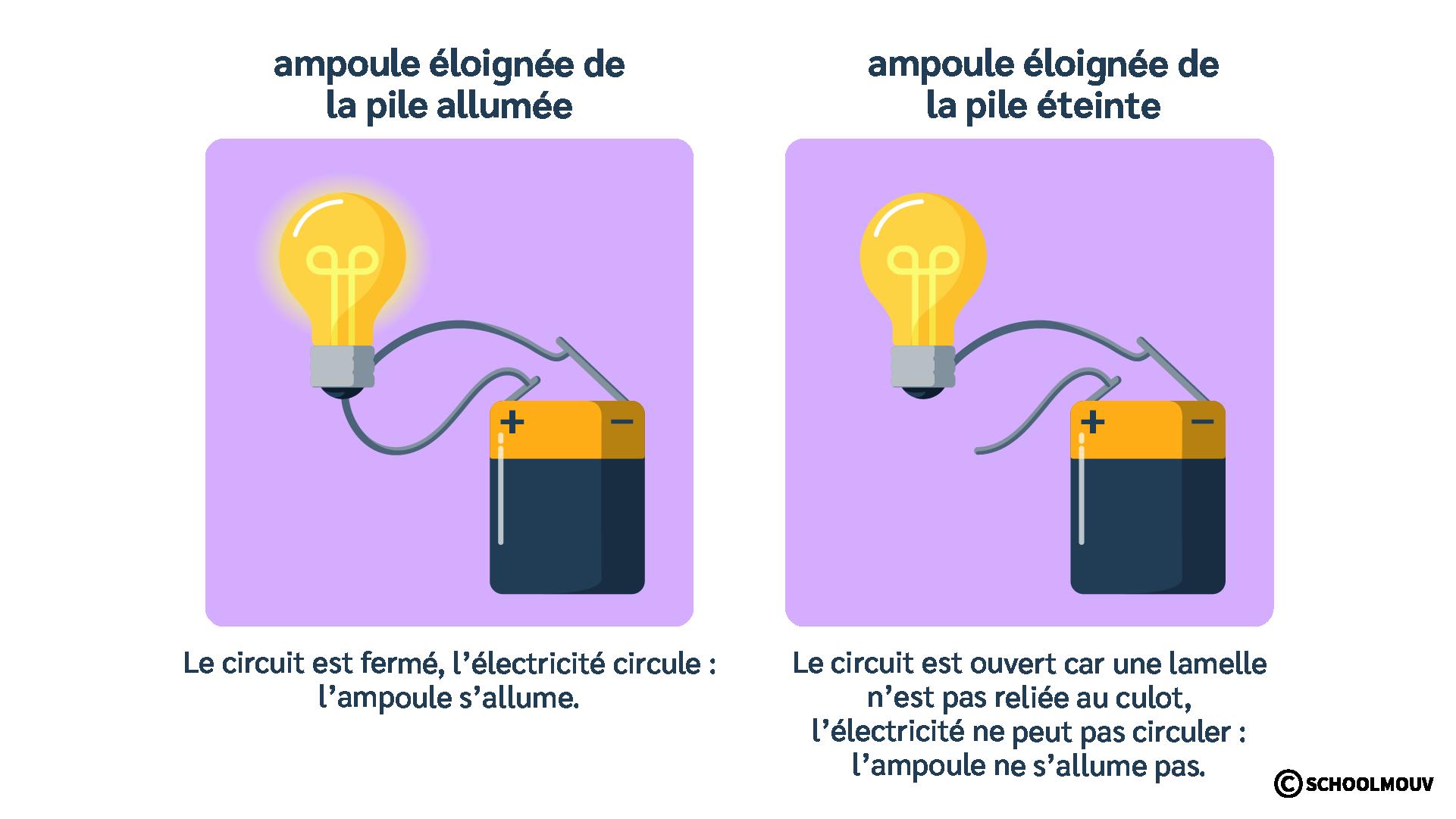 Ampoule - Pile plate - Fils électriques - Circulation de l'électricité - Circuit électrique - SchoolMouv - Sciences - CE1