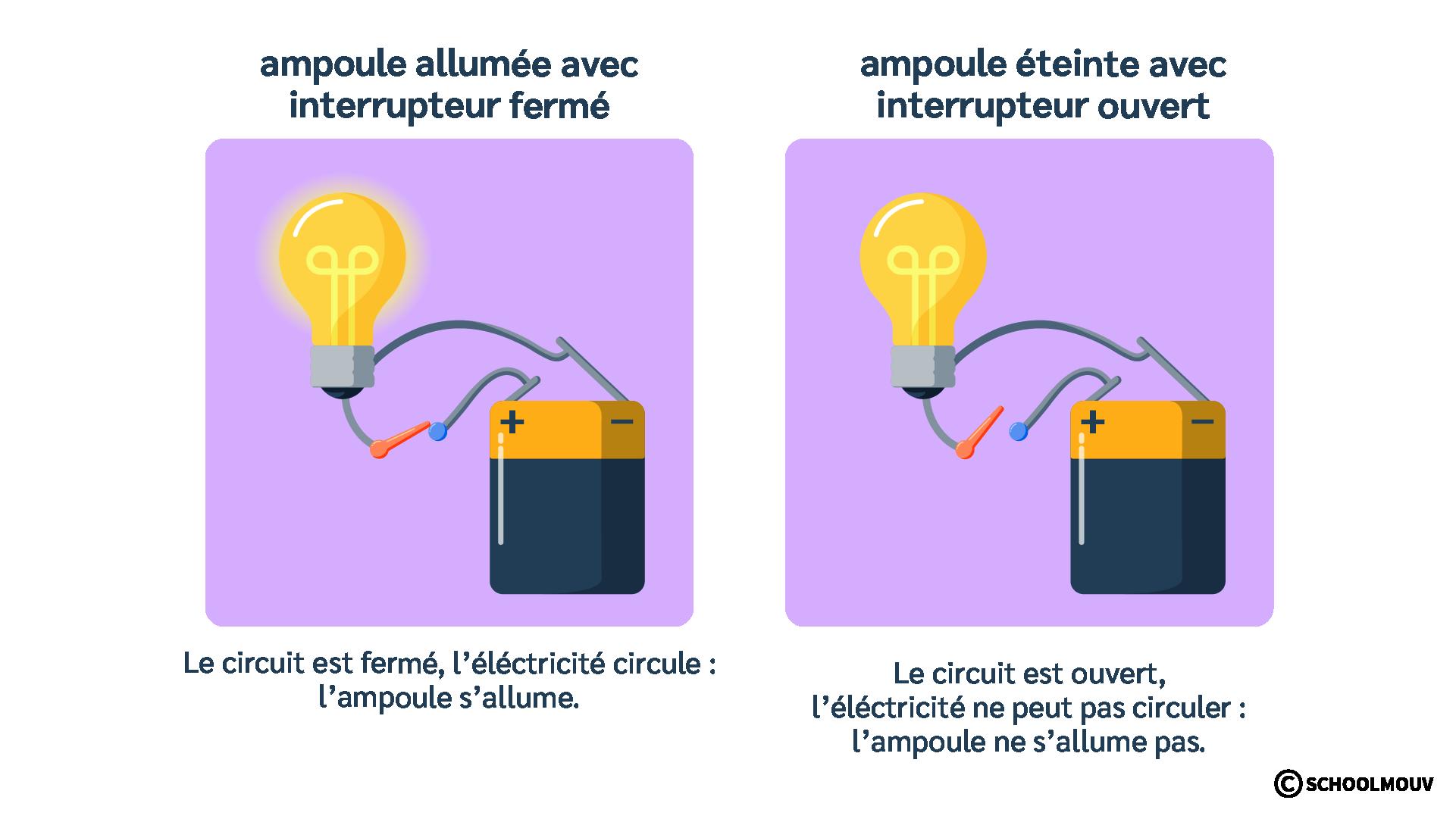 Ampoule - Pile plate - Fils électriques - Interrupteur - Circulation de l'électricité - Circuit électrique - SchoolMouv - Sciences - CE1
