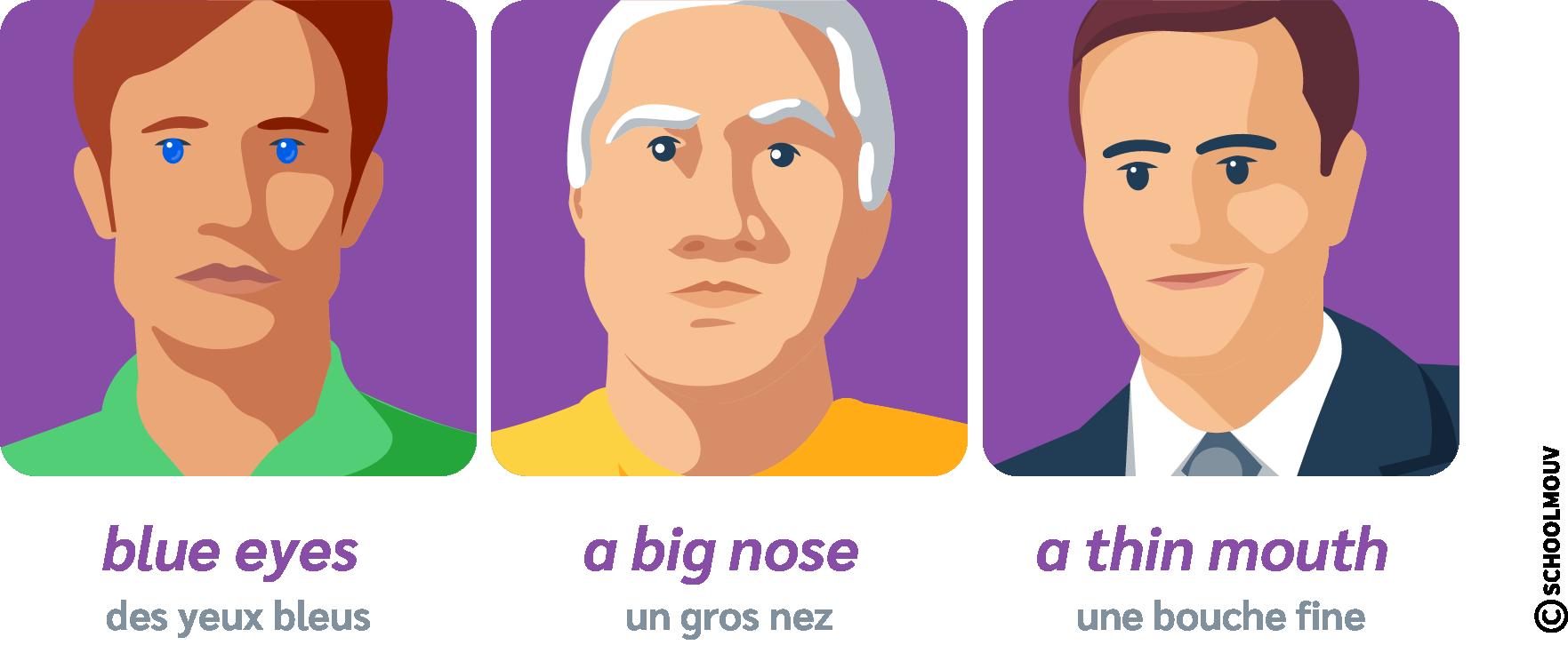 description physique visage anglais