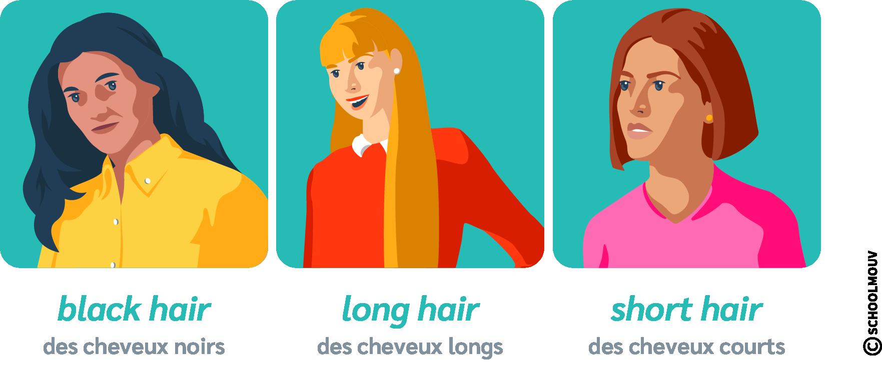description physique cheveux anglais