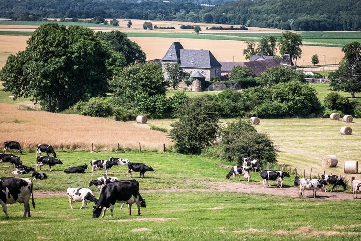 primaire ce2 questionner le monde identifier des paysages naturels pré vaches village campagne