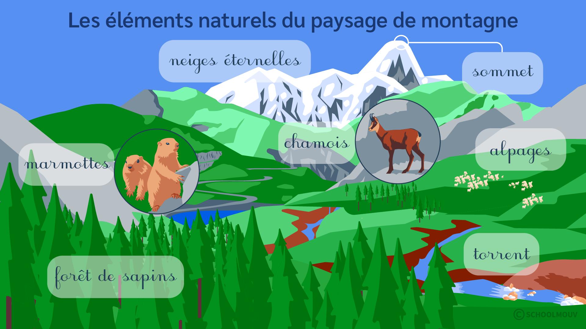 primaire ce2 questionner le monde identifier des paysages éléments naturels