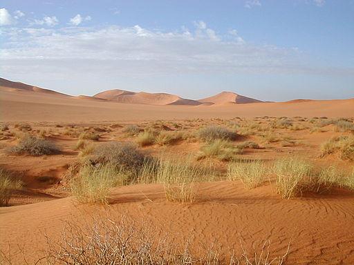 primaire questionner le monde géographie ce2 comparer les modes de vie Sahara