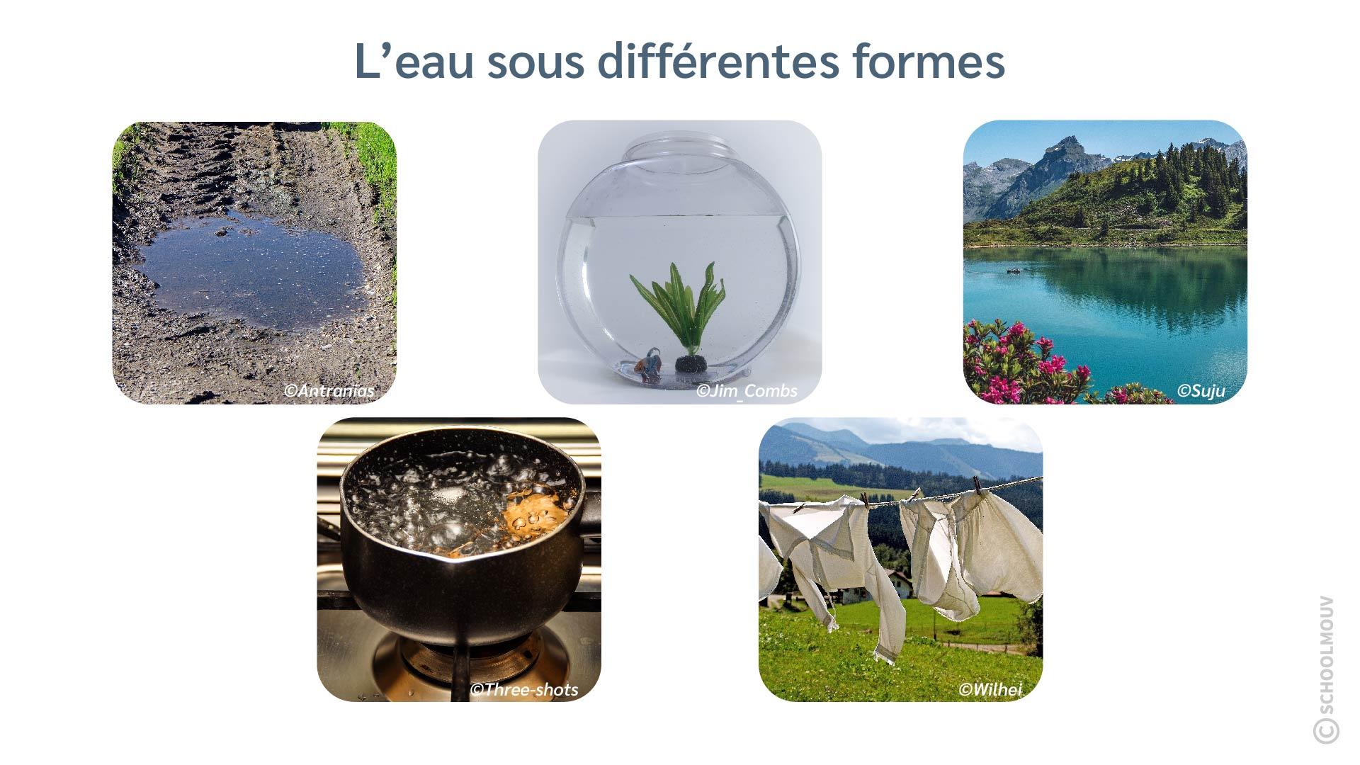 Eau - Flaque - Bocal - Lac - Bouillir - Sécher - Linge - Vapeur - Liquide - SchoolMouv - Sciences - CE2
