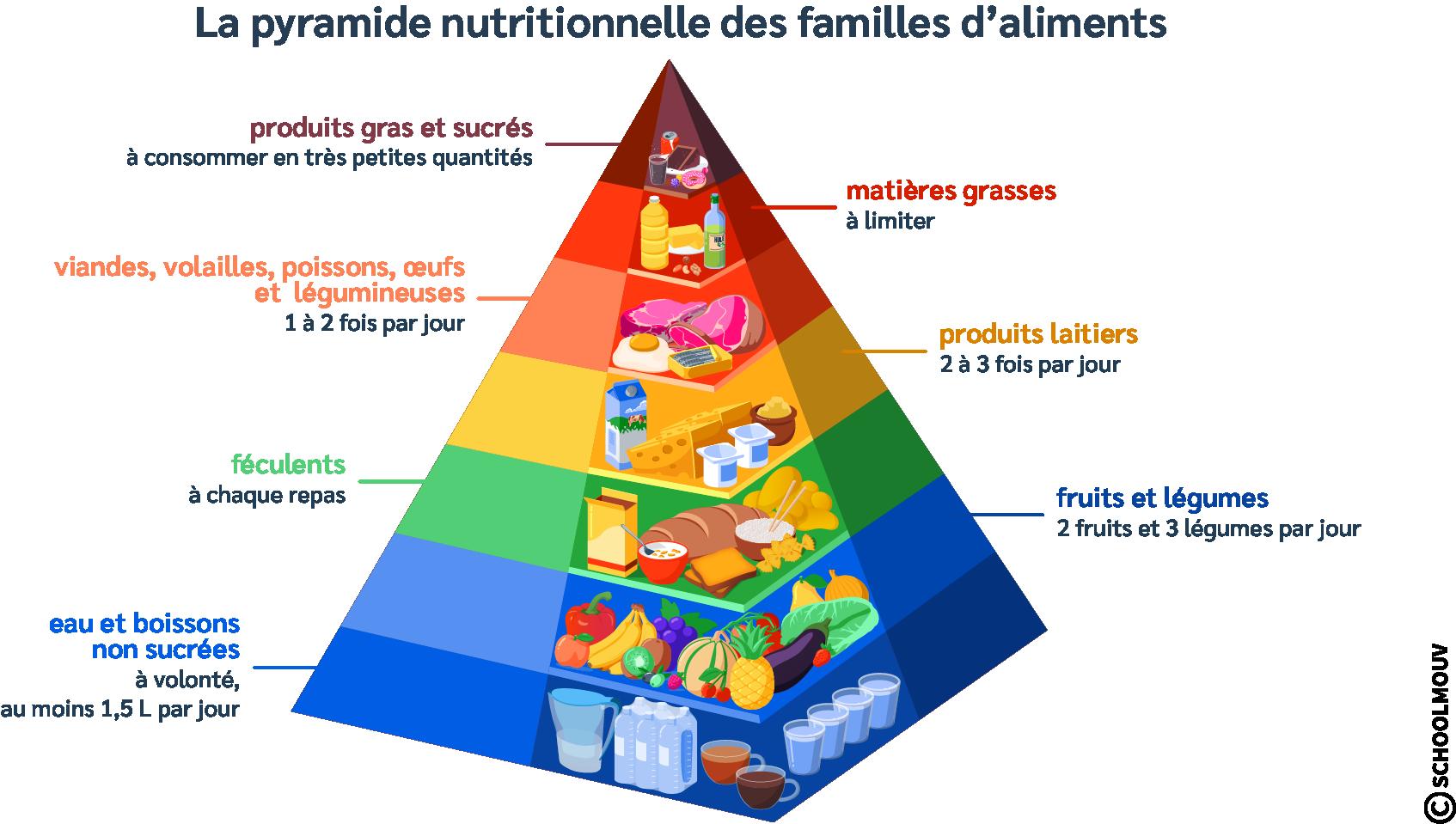Pyramide nutritionnelle - Menu - Équilibré - Alimentation - Familles d'aliments - Repas - Apports essentiels - SchoolMouv - Sciences - CE2