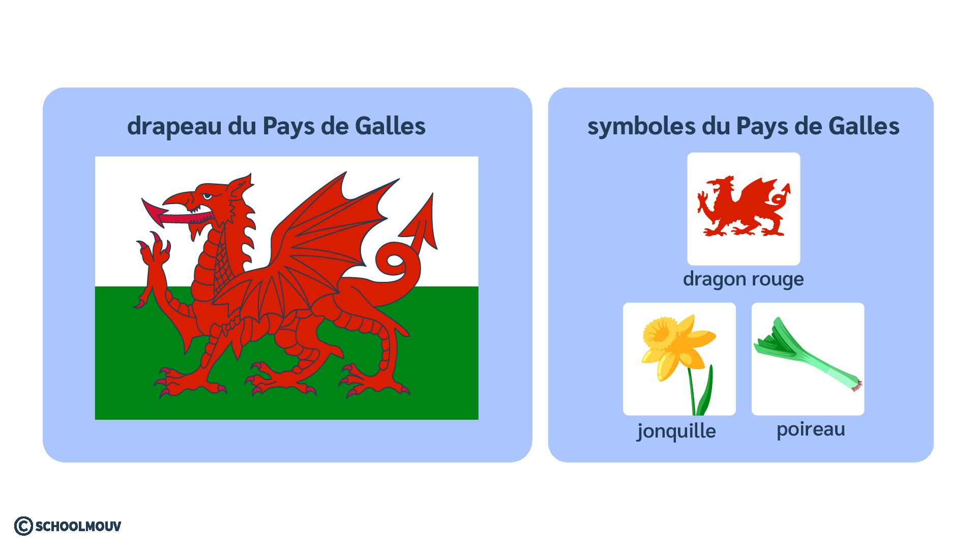 Pays de Galles symboles dragon jonquille poireau anglais
