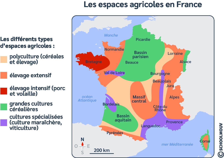 Carte - France - Espaces agricoles - Polyculture - Cultures céréalières - Cultures spécialisées - Élevage - SchoolMouv - Sciences - CM1
