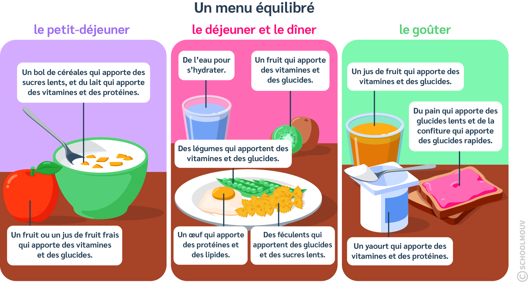 Menu équilibré - Petit déjeuner - Déjeuner - Dîner - Goûter - Apports alimentaires - Repas - SchoolMouv - Sciences - CM1