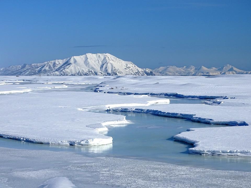Banquise - Polaire - Arctique - Antarctique - Pôle - SchoolMouv - Sciences - CM1