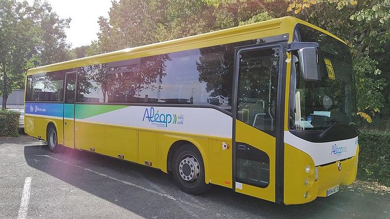 Bus - Ramassage scolaire - Transport en commun - École - Véhicule - Long - SchoolMouv - Géographie - CM2