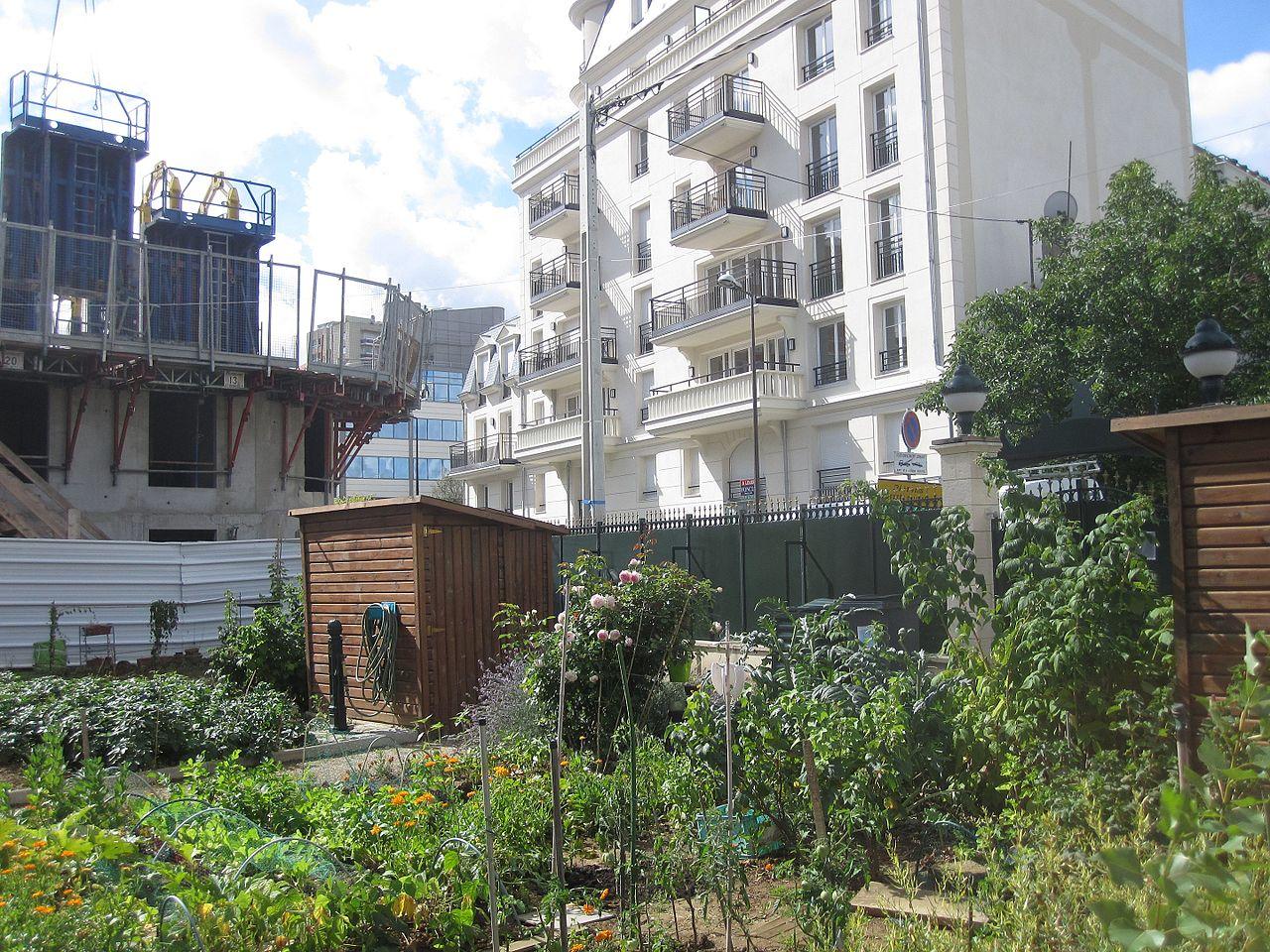 Jardins collectifs - Ville - Verdure - Urbain - Potager - Convivial - Cultiver - Fruits - Légumes - SchoolMouv - Géographie - CM2