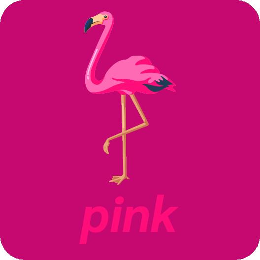 pink colours anglais