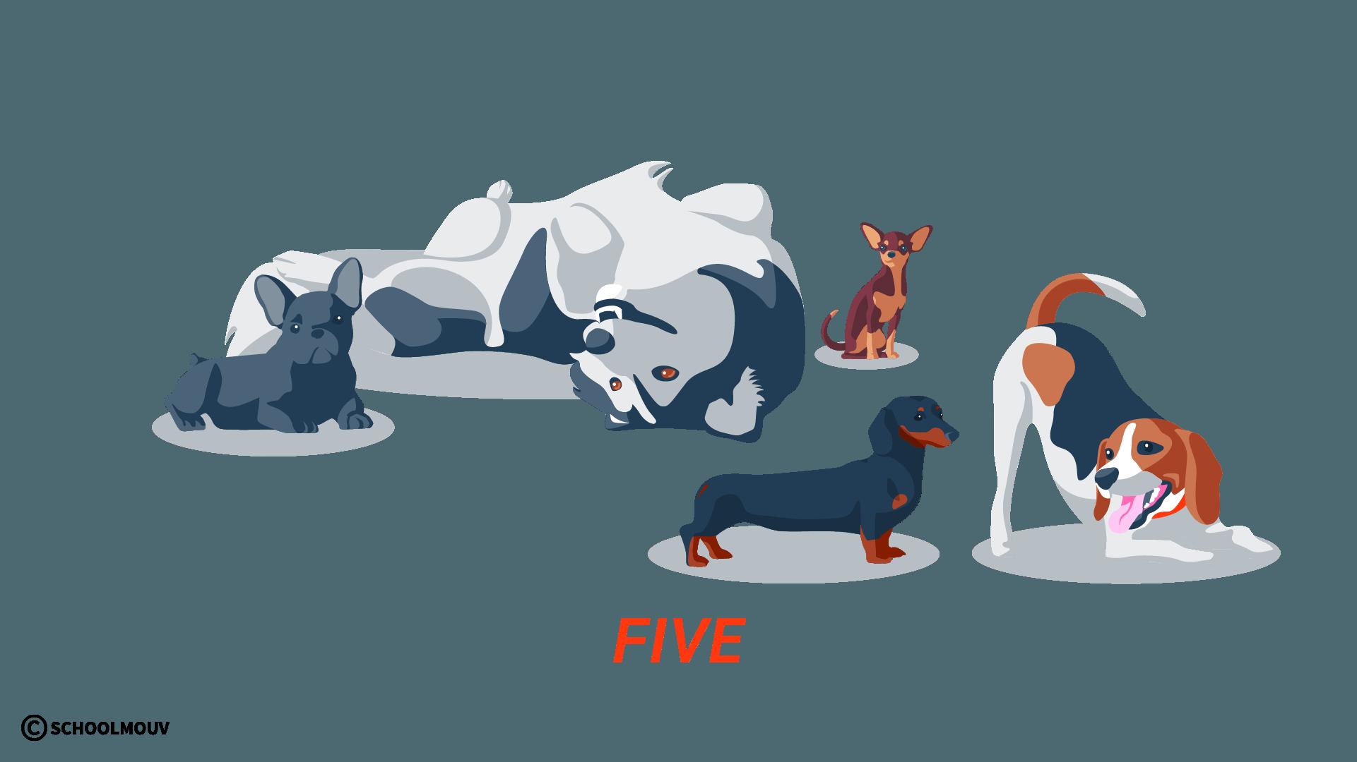 five cinq nombres compter anglais
