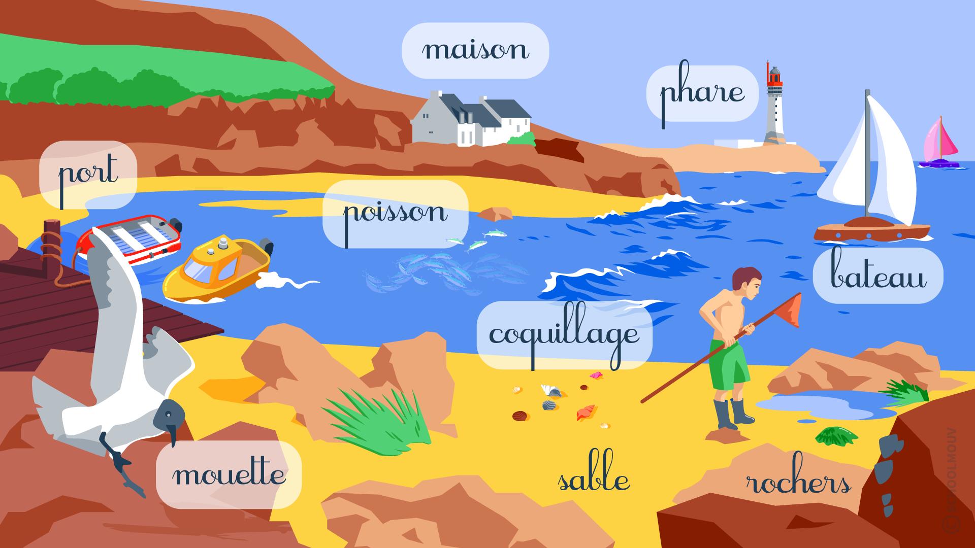 Questionner le monde géographie CP identifier des paysages mer