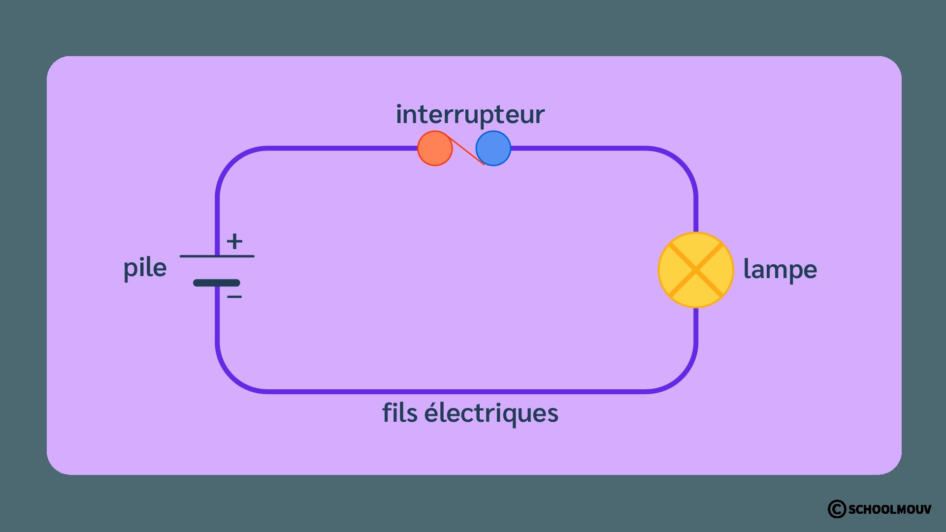 Schéma - Circuit électrique - Lampe - Pile - Interrupteur - SchoolMouv - Sciences - CP