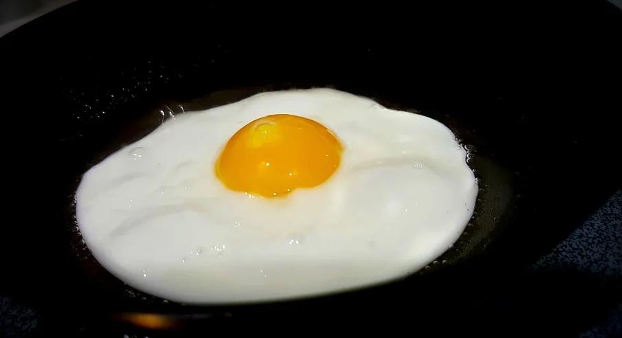 Œuf - Petit-déjeuner - Protéines - SchoolMouv - Sciences - CP