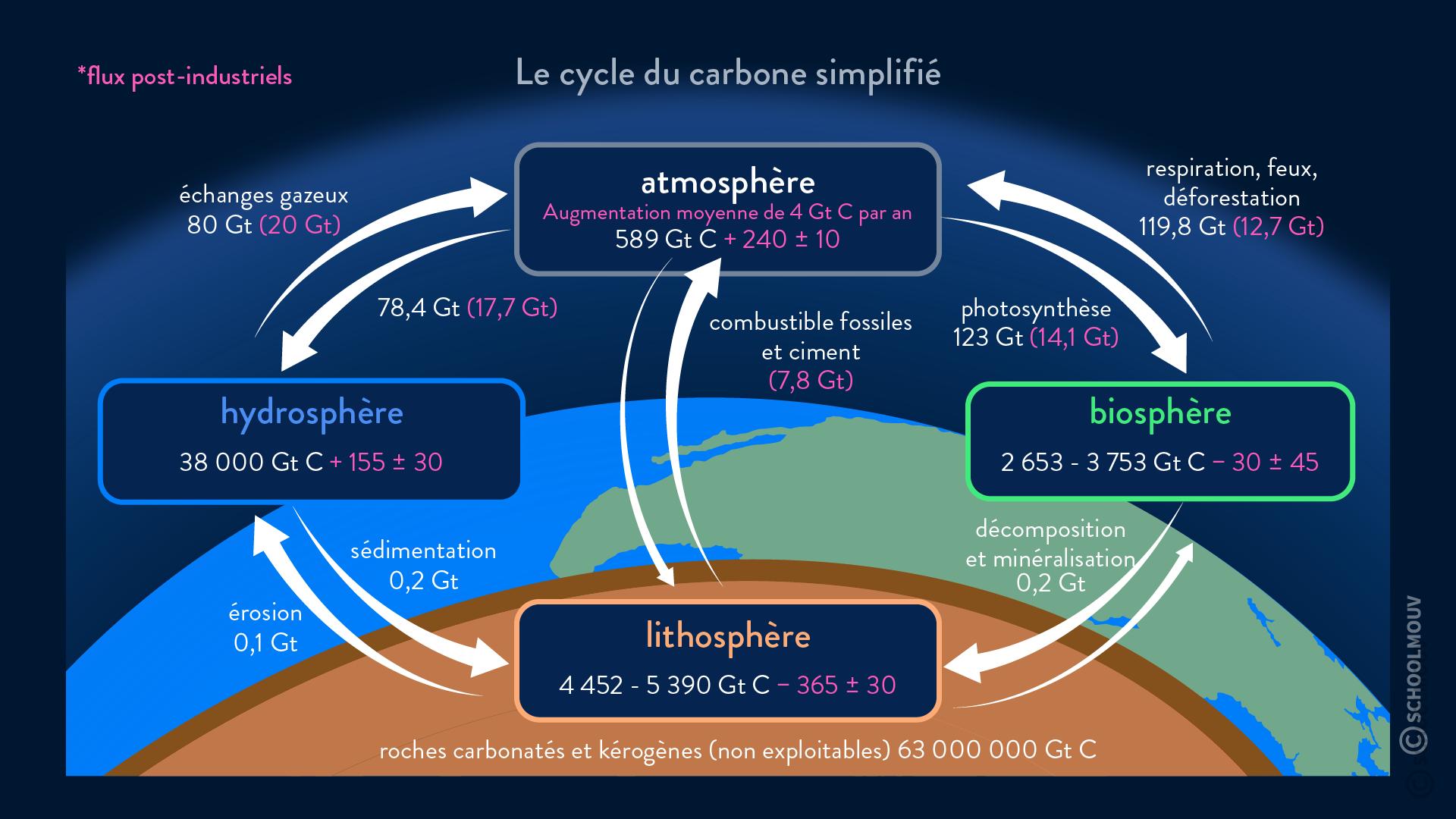Cycle du carbone simplifié réservoirs et flux principaux