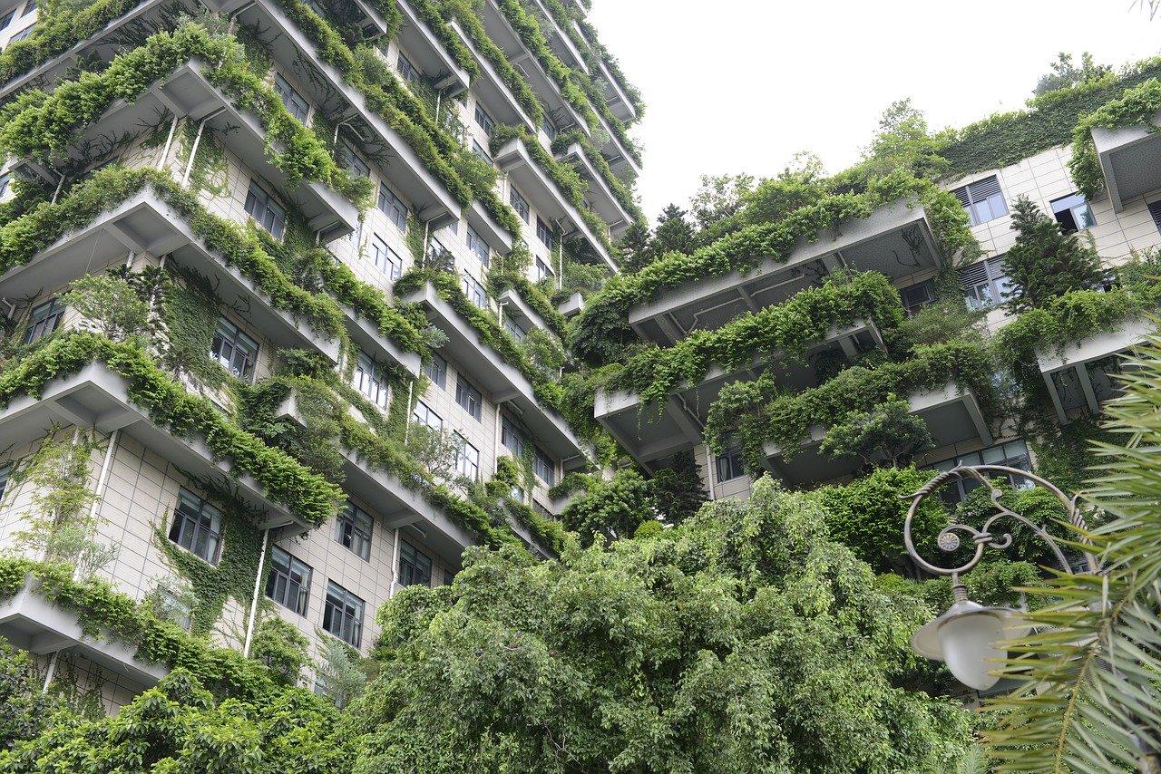 végétalisation ville