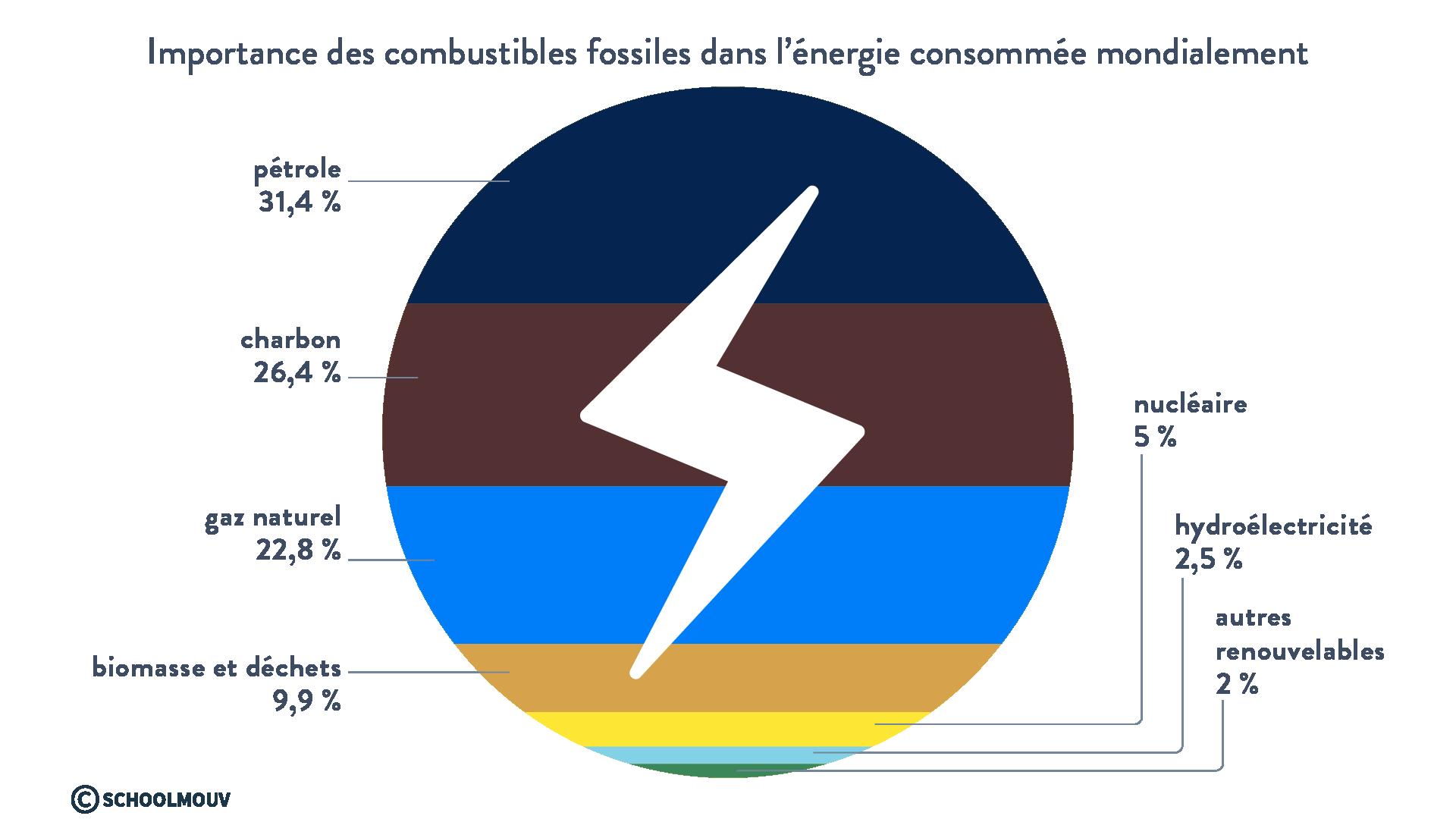 combustibles fossiles énergie consommée mondialement