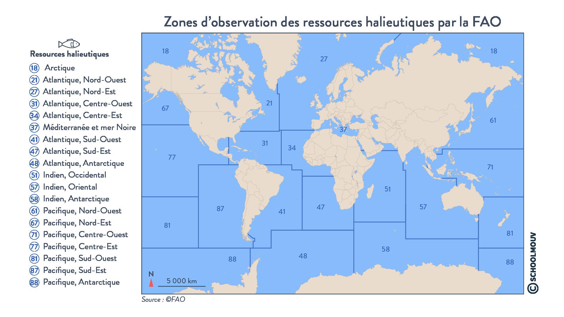 Zones d'observation des ressources halieutiques par la FAO - géographie - terminale - SchoolMouv