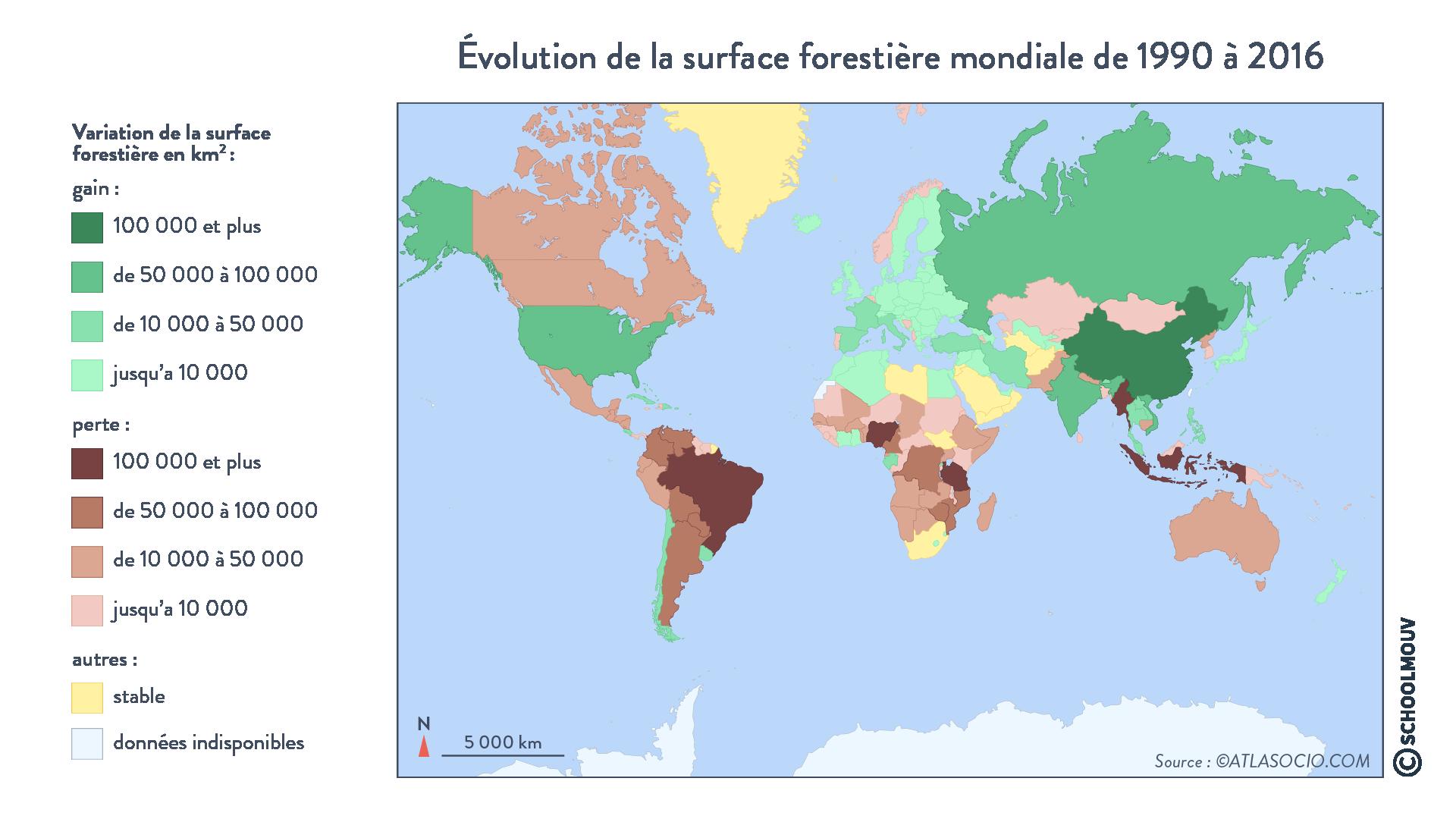évolution surface forestière mondiale