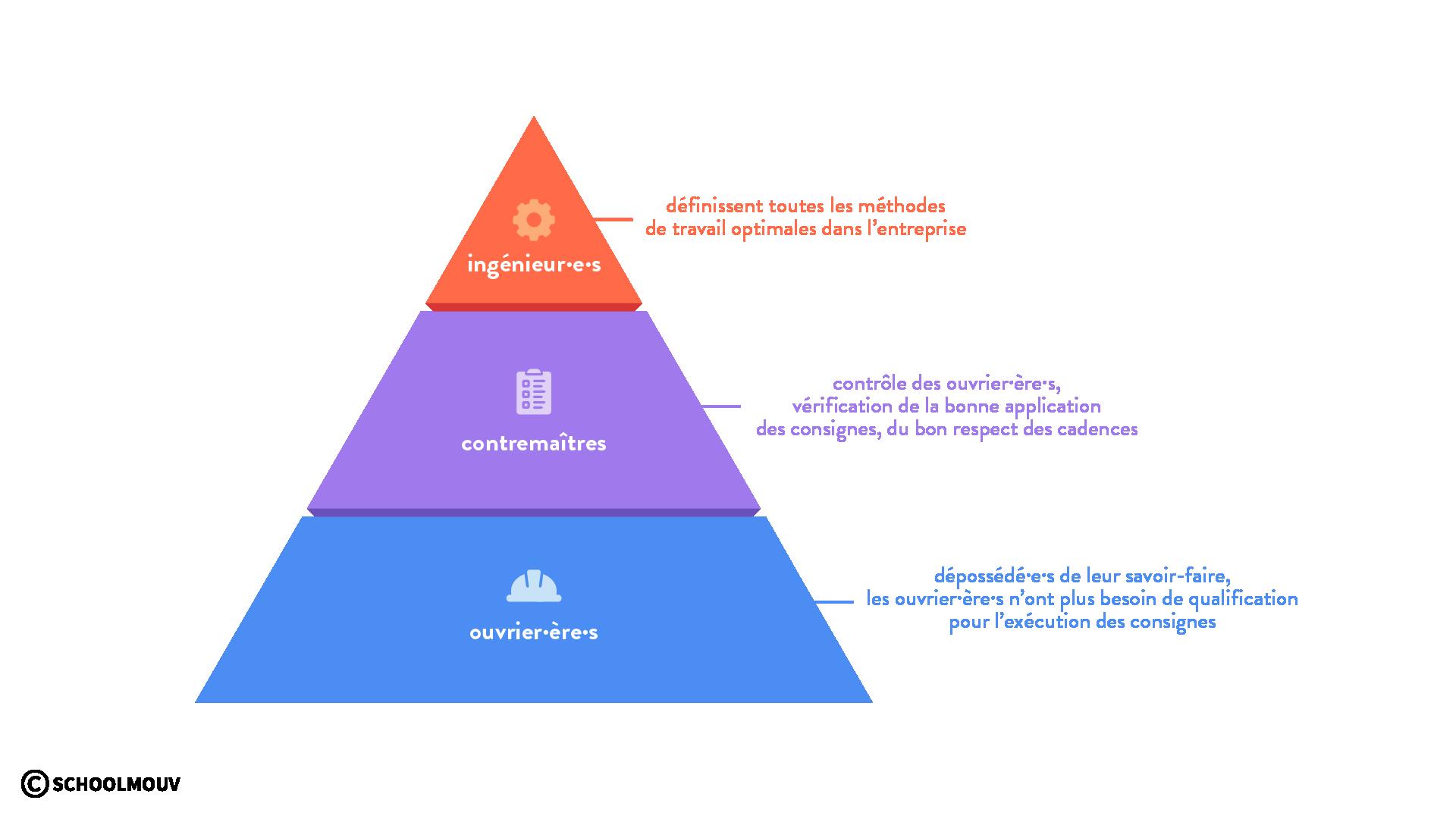 organisation pyramidale taylorisme division verticale du travail