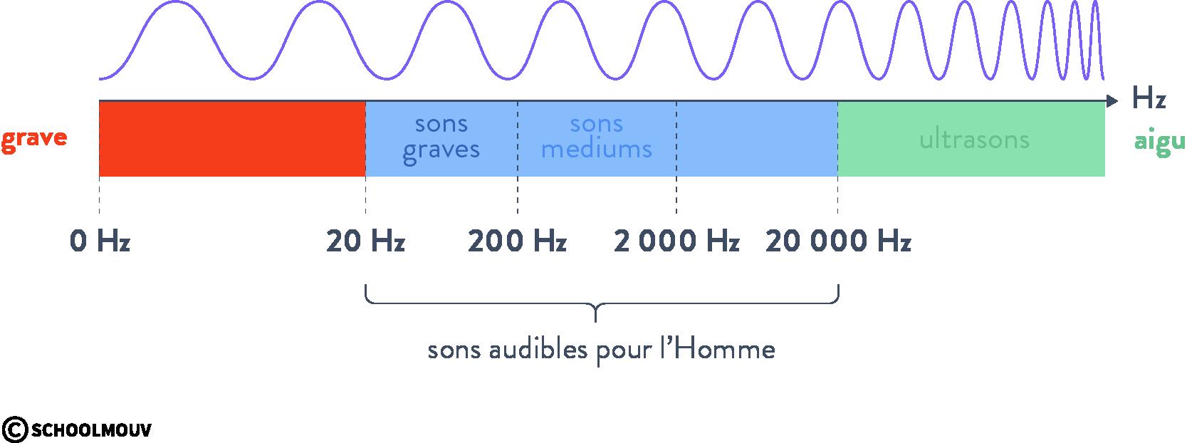 intensité sonore sons audibles ondes mécaniques schoolmouv terminale physique chimie