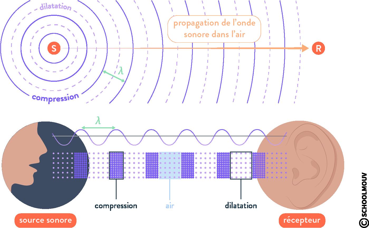 intensité sonore onde acoustique sinusoïdale périodique schoolmouv terminale physique chimie