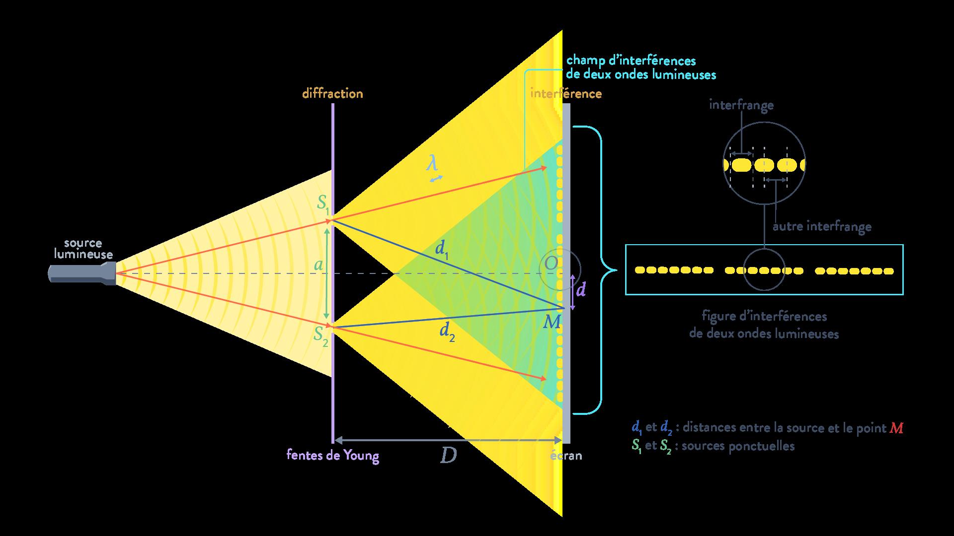 interférences de deux ondes physique chimie terminale ondes lumineuse fentes de Young