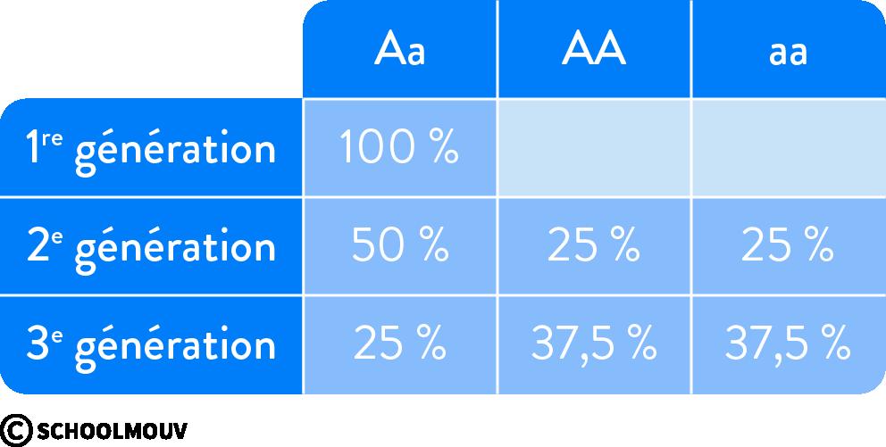 Approche statistique des travaux de Mendel
