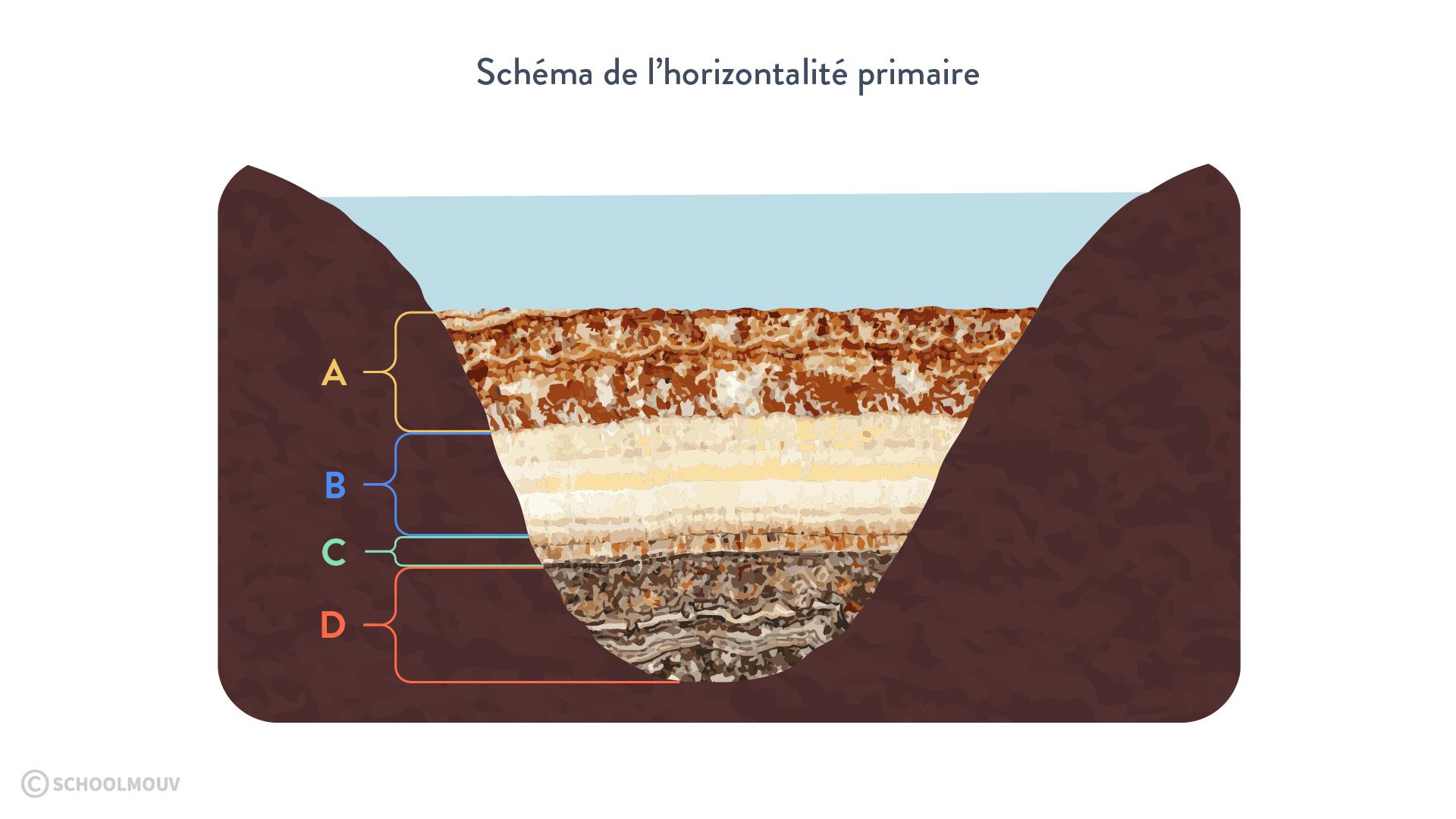 Schéma de l'horizontalité primaire
