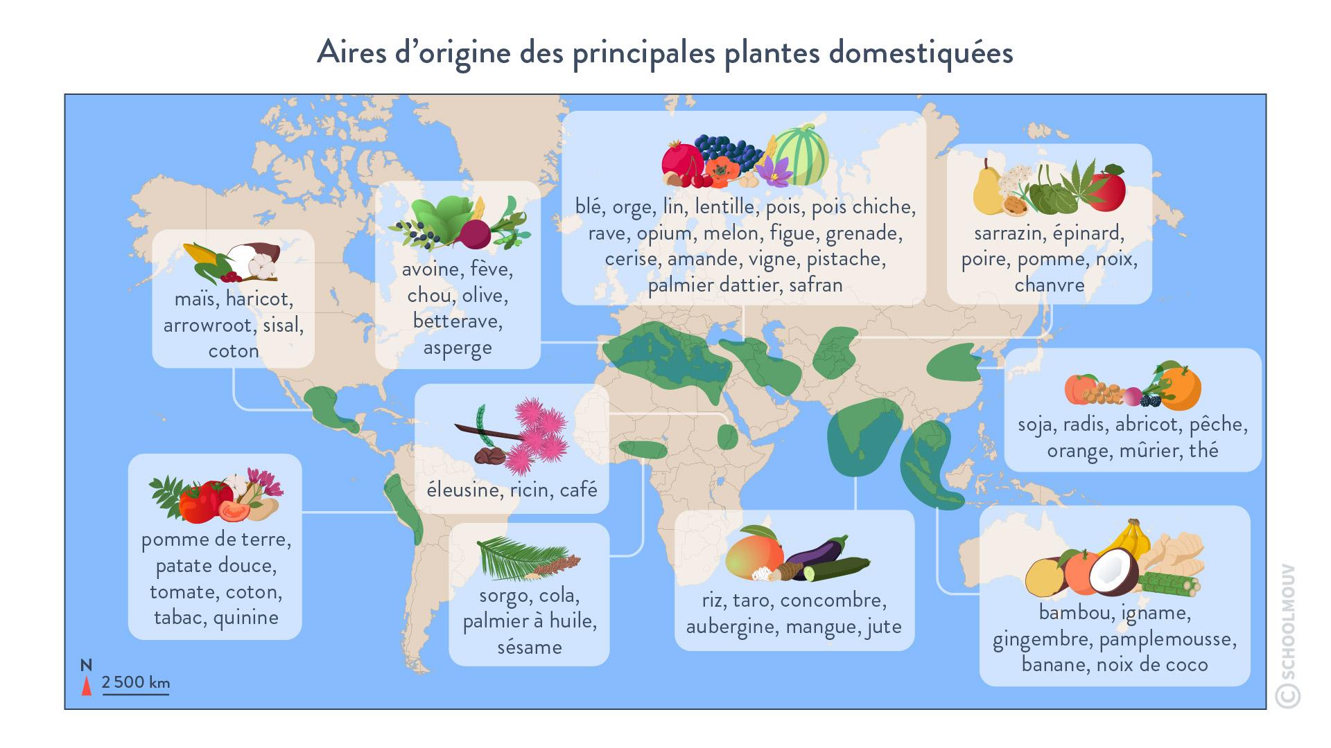 Aires d'origine des principales plantes domestiquées
